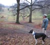 Me and Charlie in the Arnold Arboretum