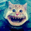 cat-shark toothy thing