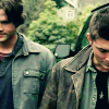 SPN: Brothers