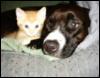 abby & baby monster cuddles <3