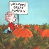 Welcome Pumpkin!