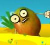 Weebl mango