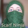 Scarf Ninja