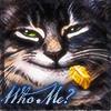 helynhighwater: Who Me?
