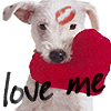Laura: puppy love me
