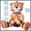 bad bear bondage