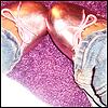 fashionxvanity userpic