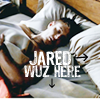 jared bed