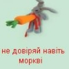 verter_ver0_2 userpic