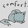comfort kitten