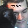 I <3 my cats