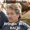 ADAMASTACHE!