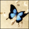 butterfly_1357 userpic