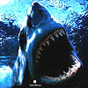 shark_lj userpic