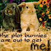 dragonsangel68: Plot Bunnies