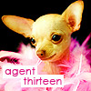 agent_thirteen userpic
