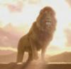 Aslan returns