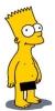 Енот: Барт Ню