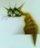 La mariposa azul: Cat
