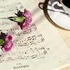 silken_sunset userpic