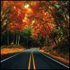 pretty: october road