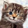 liz_z_y userpic