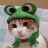 edakumi userpic