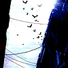 karmic_circuit userpic