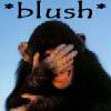 Jae: Blush