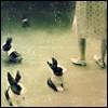 cadran_solaire userpic