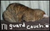 Guard the couch