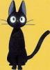 minoue userpic