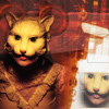 mask cats
