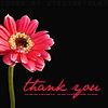 makd: Thank You