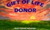 lizmopuddy: Donor