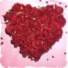 sassy_cissa: rose heart