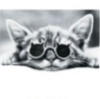 omelianovych userpic
