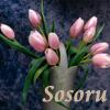 sosoru userpic