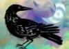 pathology, crow