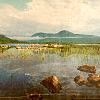 sanity_island userpic