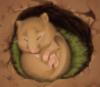 мышь в дупле