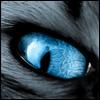 foxdf userpic