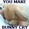 emo bunny cries