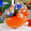 I'm Jack Sparrow's jar of dirt. [Don't touch me!]: Ugly Betty | clumsy Betty