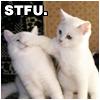 STFU [kitties ranty]