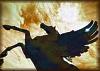 Sonne Spiritwind: horse