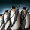 penguinista