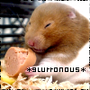 The Mellifluous Leaper 182: Hamster - Yum.