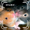 The Mellifluous Leaper 182: Hamster - Hugs