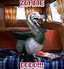 Zombie Dodo!